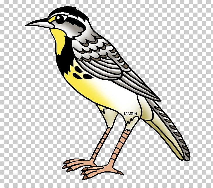 clip black and white stock Nebraska kansas montana wyoming. Western meadowlark clipart