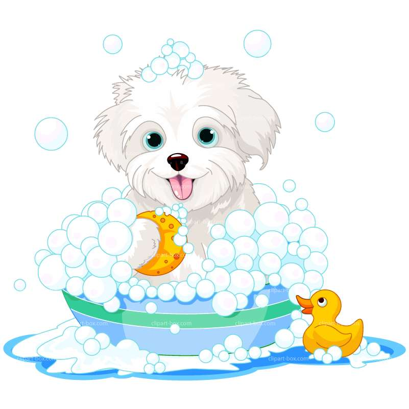 clip transparent library Wet clipart wet puppy. Dog in bath clip