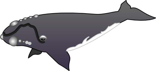 free download Clip art at clker. Whale tail clipart