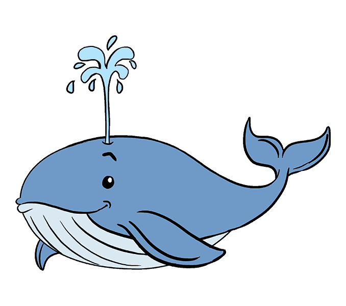 vector freeuse download Sperm whale Drawing Killer whale Coloring book