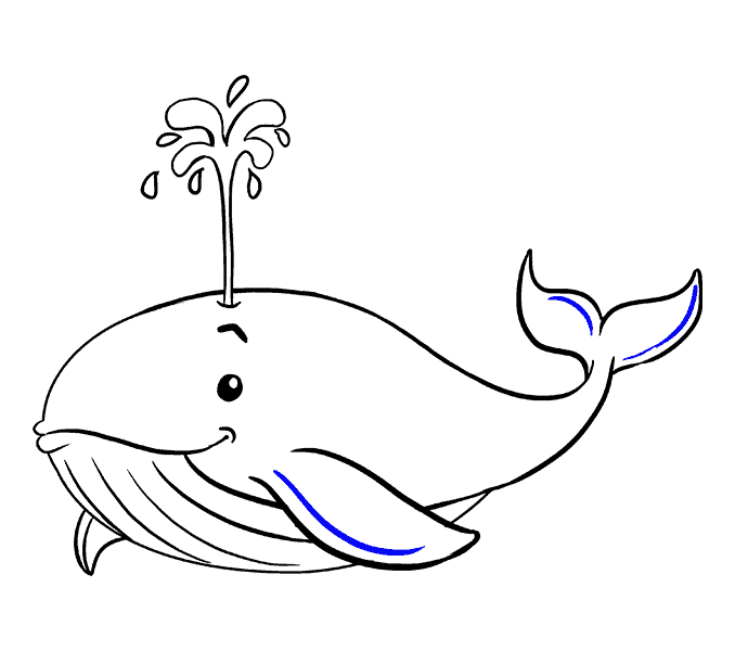 picture freeuse library How to Draw a Whale in a Few Easy Steps