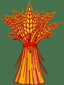 clipart free stock Wheat bundle clipart. Portal