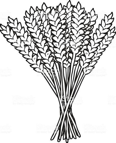 clip art download Wheat bundle clipart. Image result for black