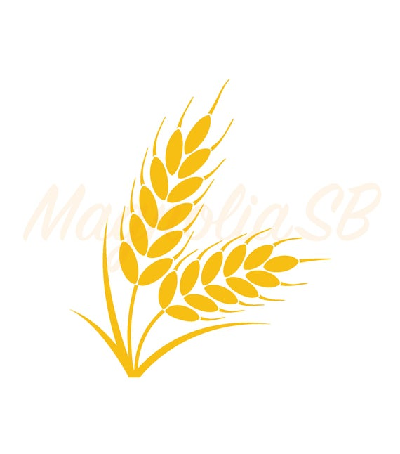 image transparent Svg dxf cutting vector. Wheat clipart