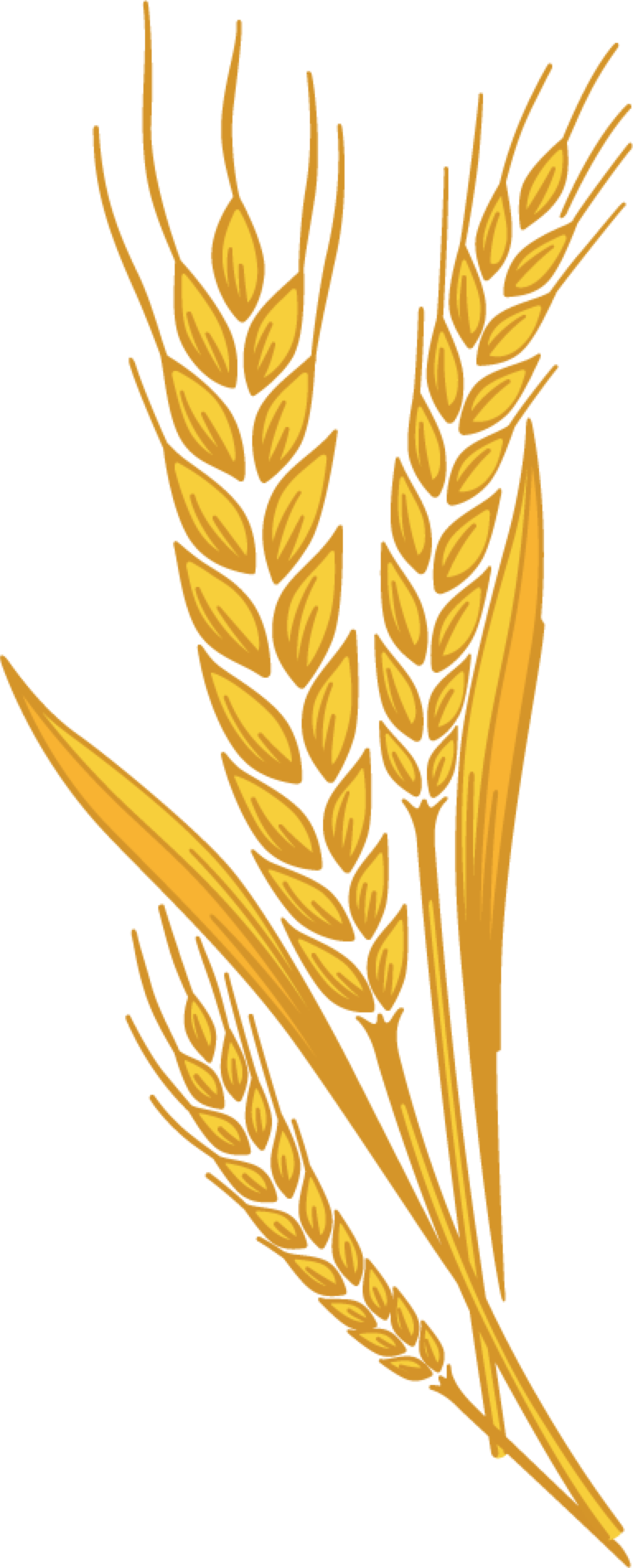 jpg Collection of free Grained clipart harvest