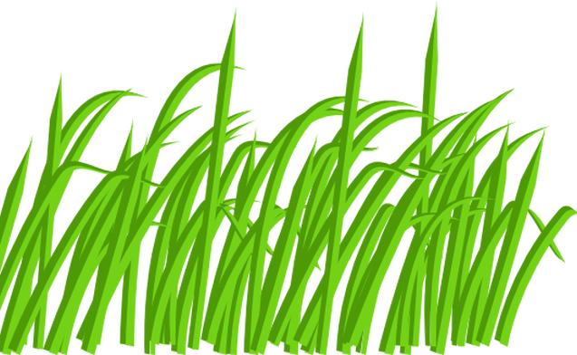 vector library library Wheat grass clipart. Christianslawncare contact and we
