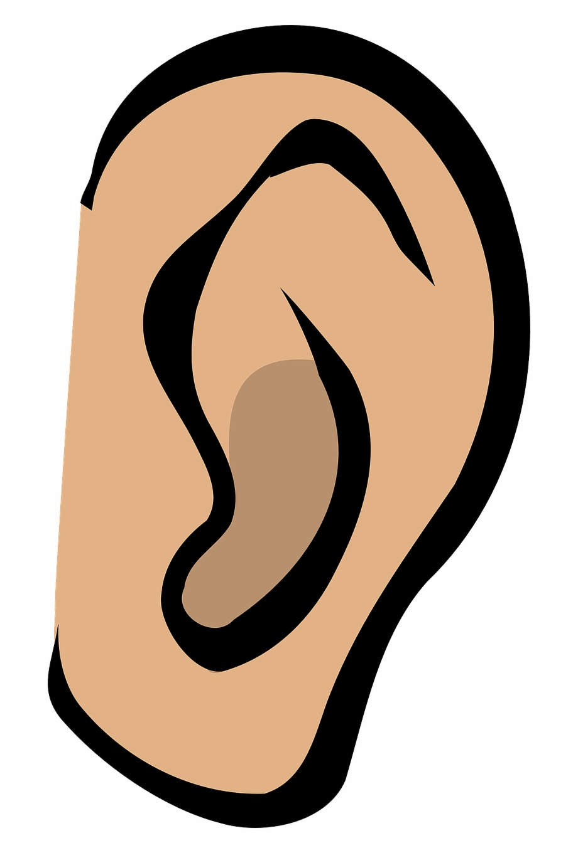 royalty free library Listen hear gossip sound. Whisper clipart ear hearing