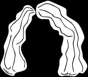 svg transparent stock Wig drawing. Clip art at clker