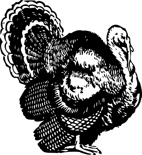 clipart freeuse library Clip art at clker. Wild turkey clipart black and white