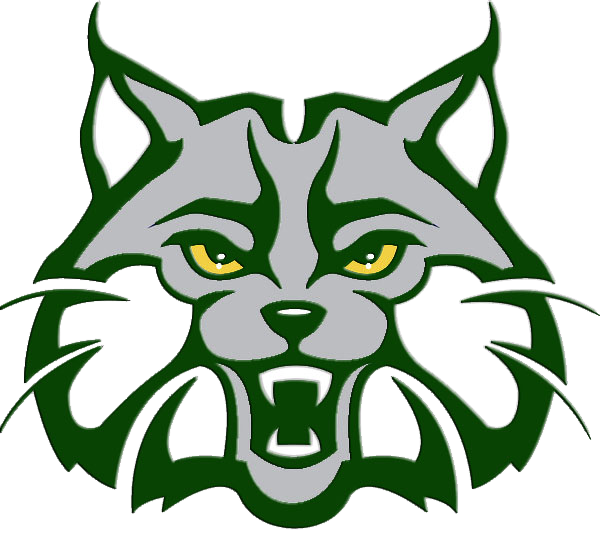 picture black and white Indian trail middle school. Wildcat clipart green