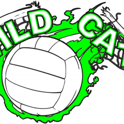 clip transparent Wildcat Volleyball