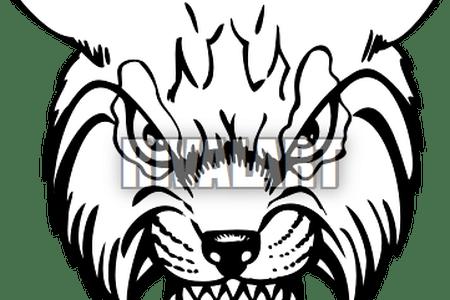 clip art Download wallpaper clipart full. Wildcats drawing