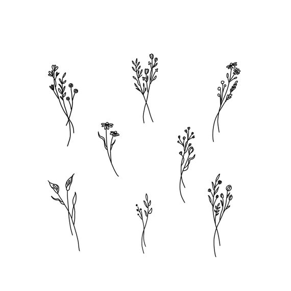 jpg Wildflower clipart. Flower