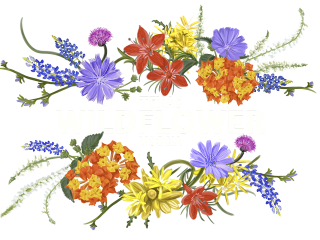 royalty free download Wild plant free on. Wildflower clipart
