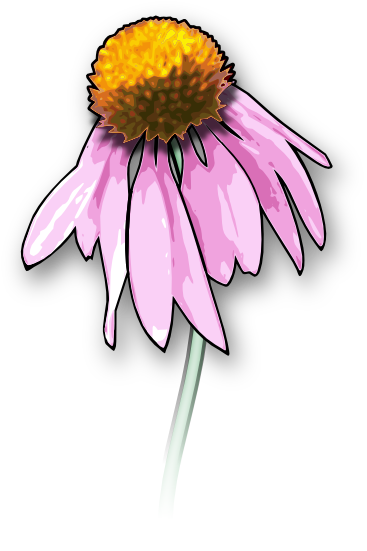 jpg library stock Free flower and graphics. Wildflower clipart