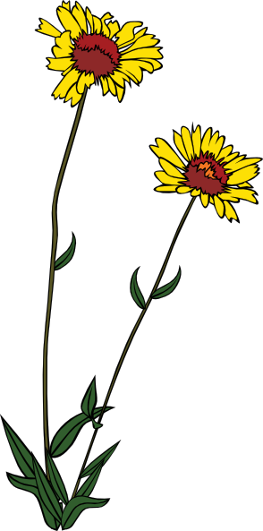 picture royalty free stock Free on dumielauxepices net. Wildflower clipart