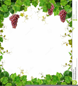 jpg transparent library Free images at clker. Wine clipart borders