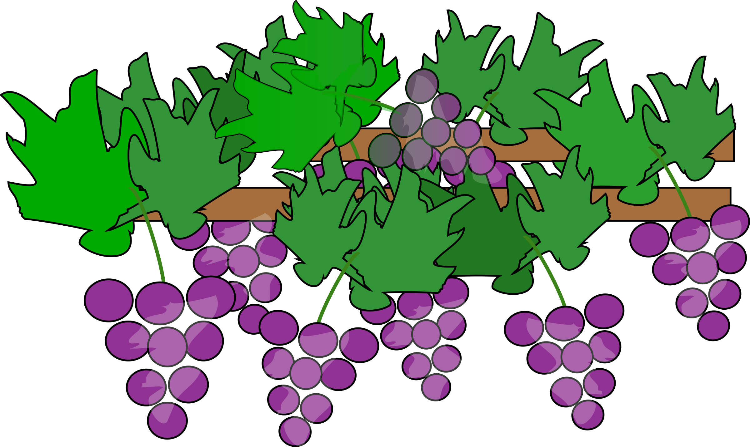 clip art transparent download Grapes growing for wine. Grapevine clipart greps