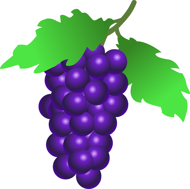 vector transparent wine grapes clipart #64288879