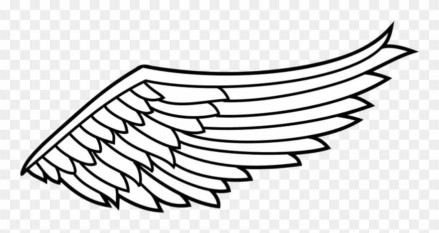 transparent download Wing clipart. Eagle black and white