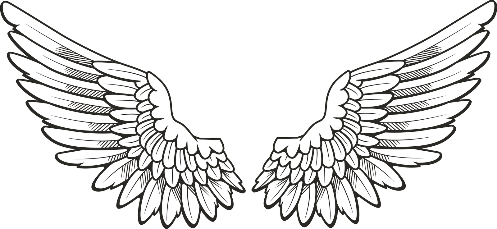 clip download Free wings cliparts download. Wing clipart