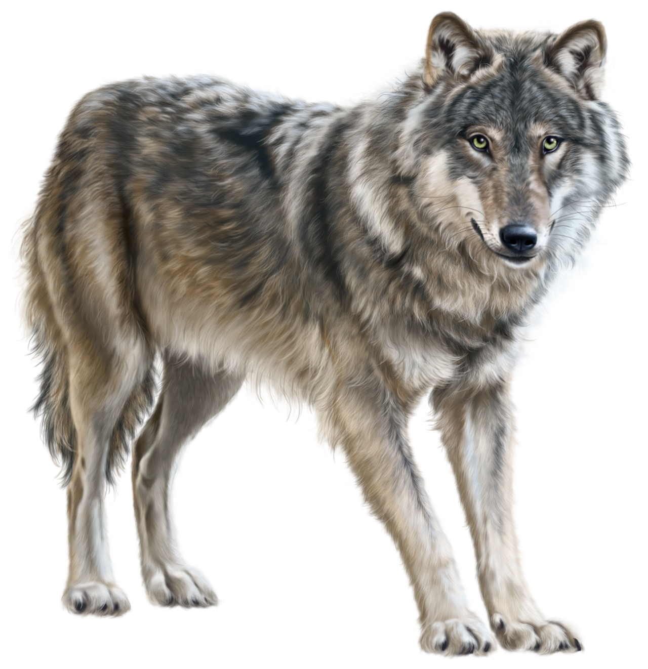 vector black and white download Png clip art best. Wolf clipart