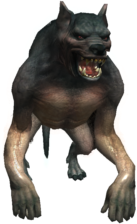 png free download Wolfman drawing full body. Werewolf witcher wiki fandom