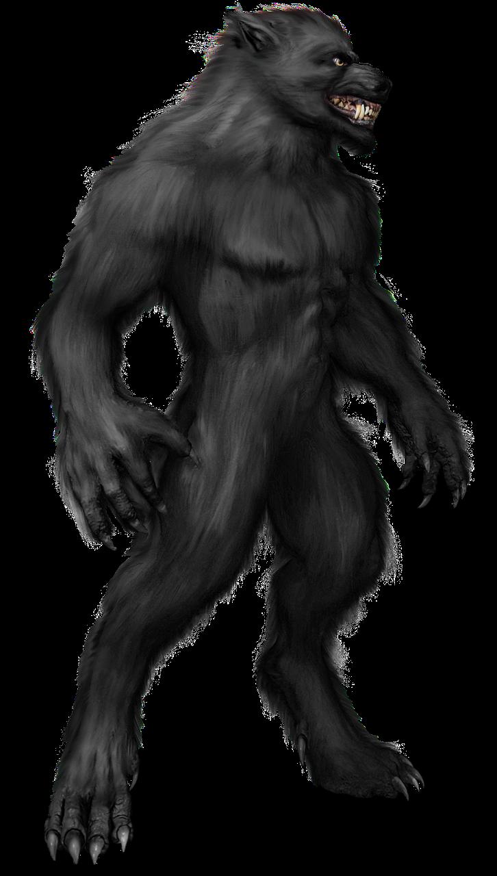 image free download Kostenloses bild auf pixabay. Wolfman drawing full body