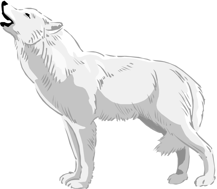 graphic free Wolves clipart. Free wolf white