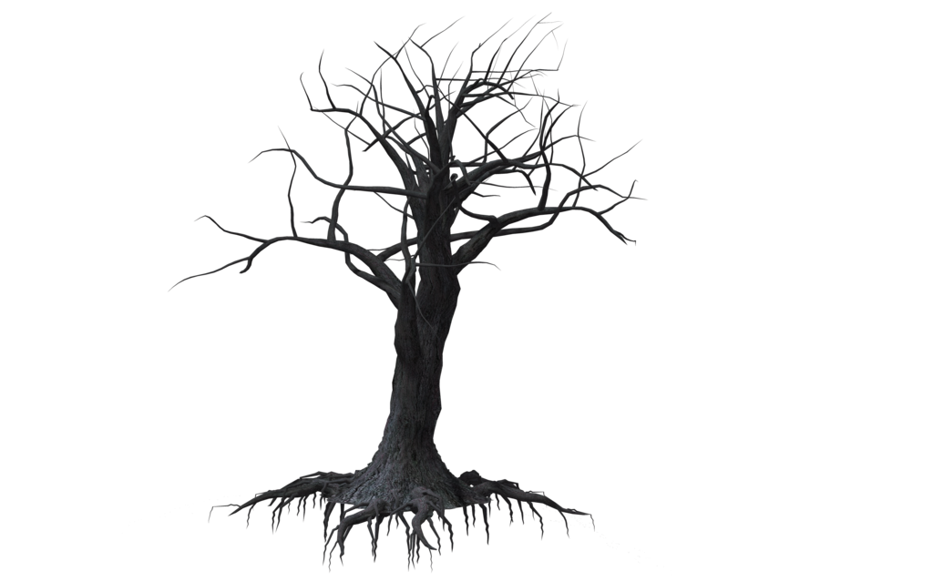 jpg free library Forest Tree Drawing at GetDrawings