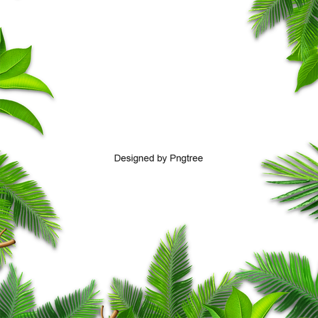 svg black and white library Leaves palm leaf jungle. Vector plant