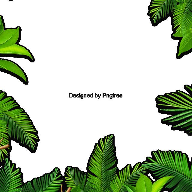 clip transparent Leaves Palm