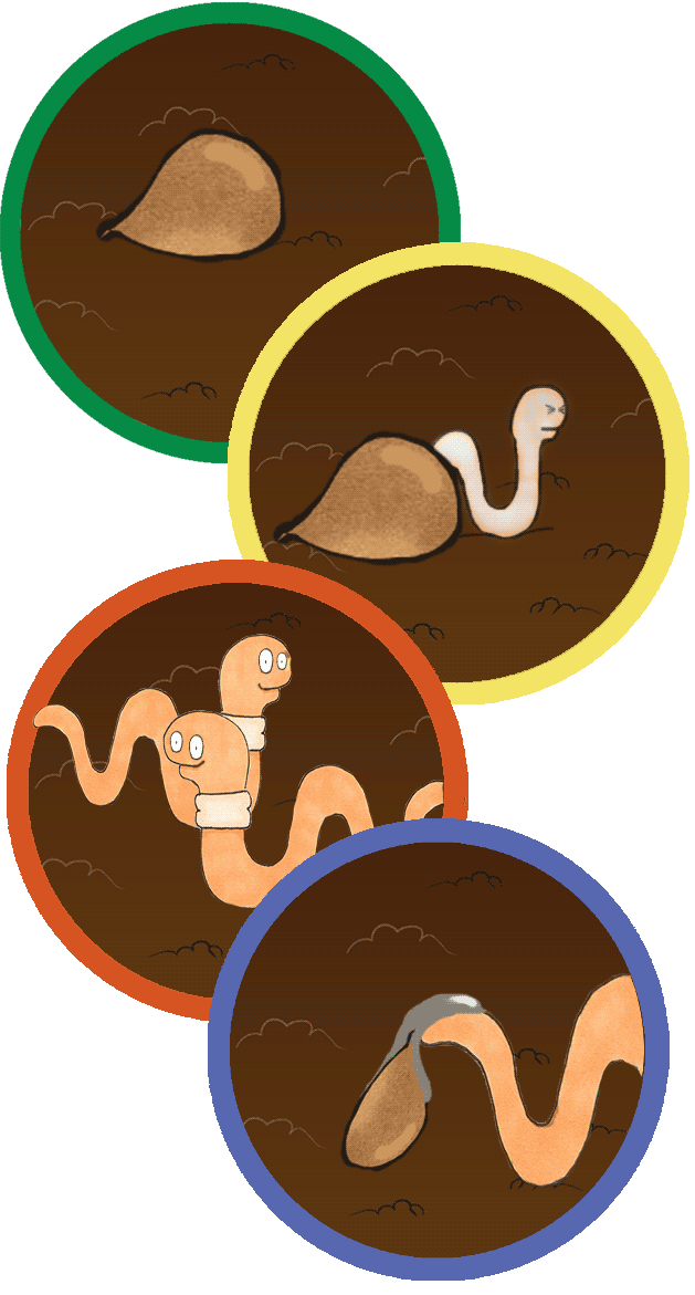 png library library Learn About Worms