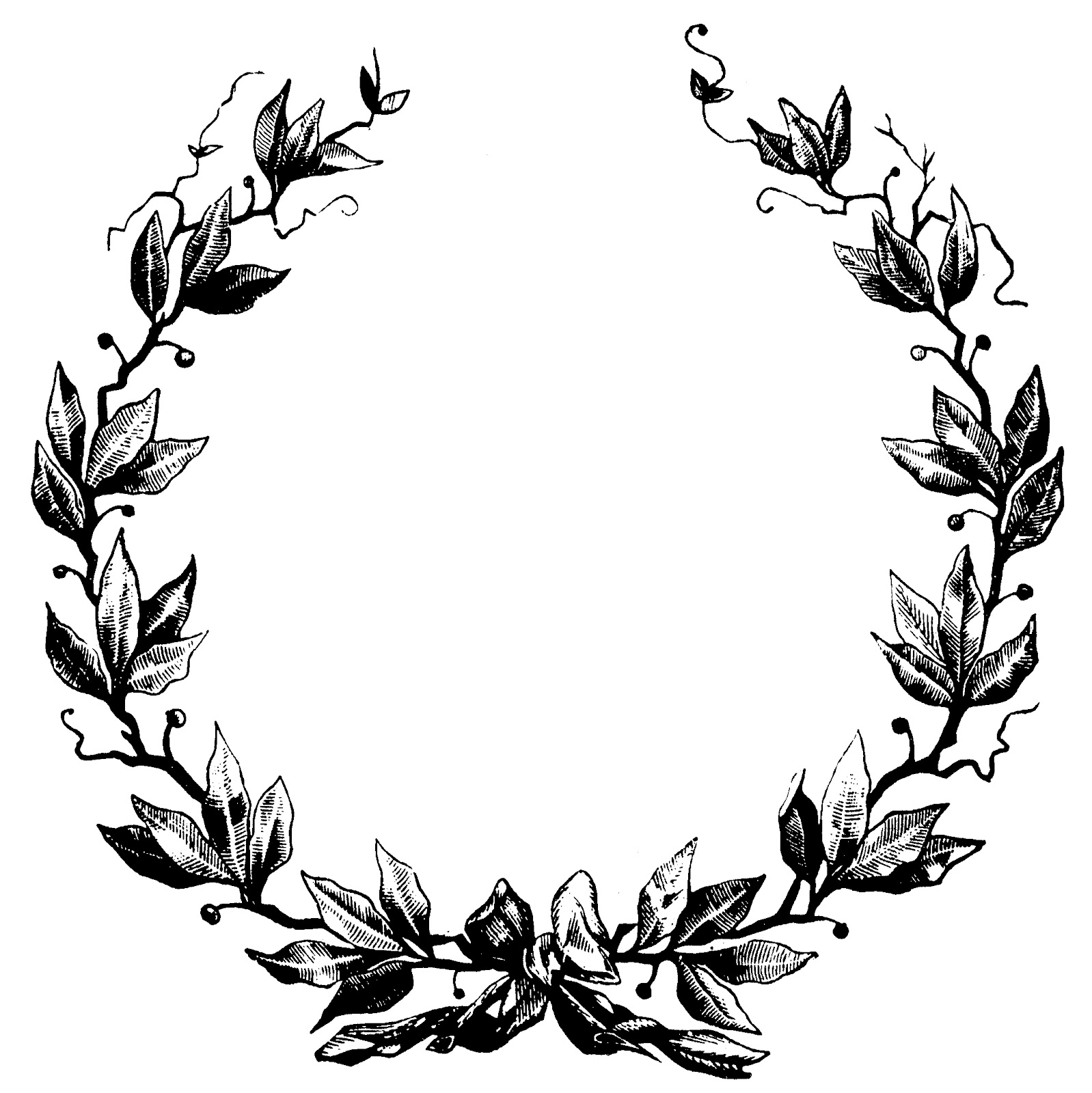 vector transparent library Free vine cliparts download. Wreath frame clipart