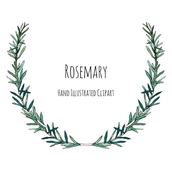 banner stock Wreath frame clipart. Illustration rosemary herb and