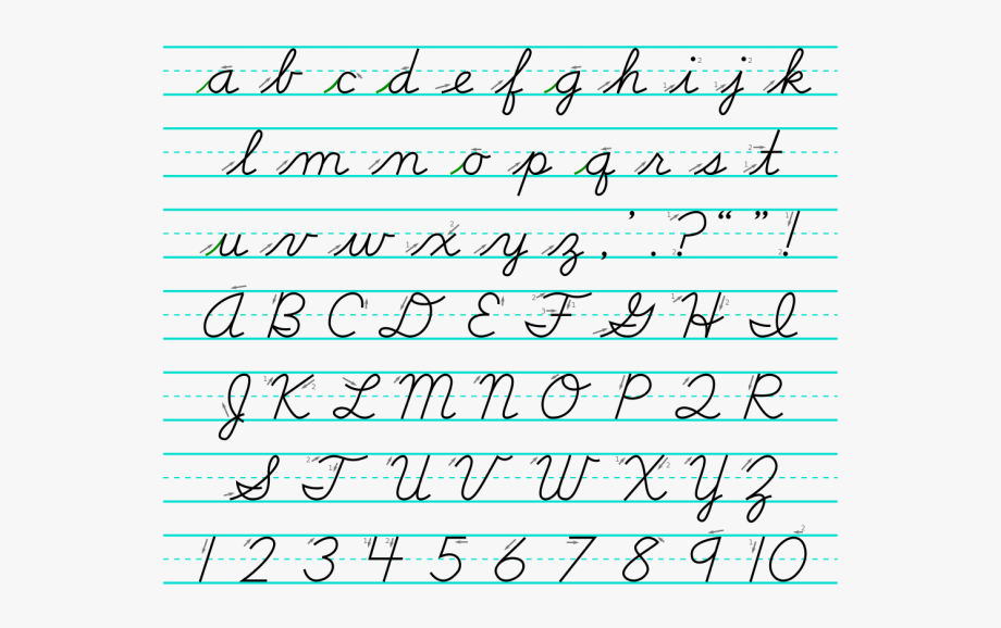 vector transparent library Sheet learn how to. Writer clipart cursive writing.