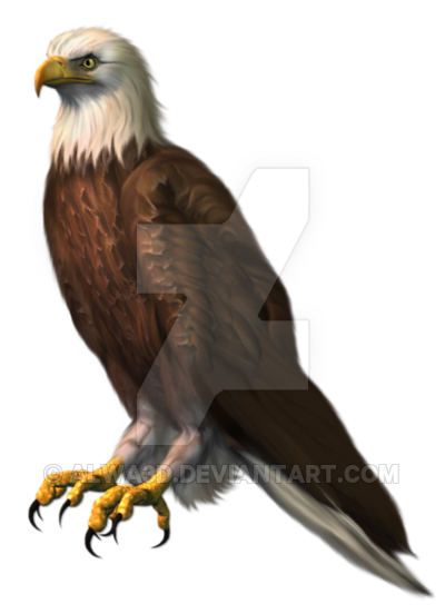 graphic freeuse stock Eagle png picture by. Writer clipart transparent