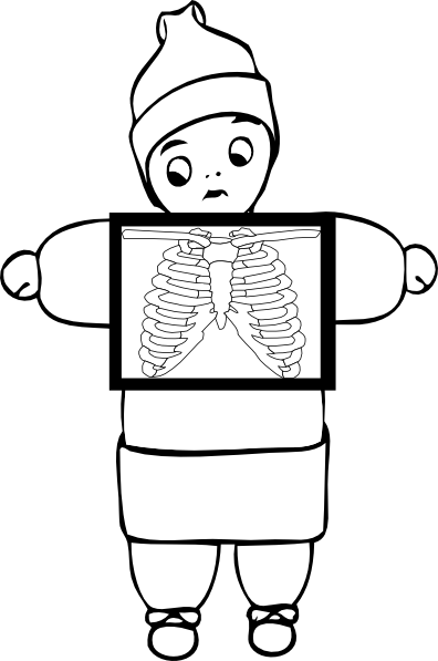 freeuse download X ray clipart. Outline clip art at