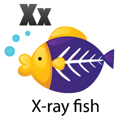picture transparent library Animal alphabet for pbs. X ray fish clipart