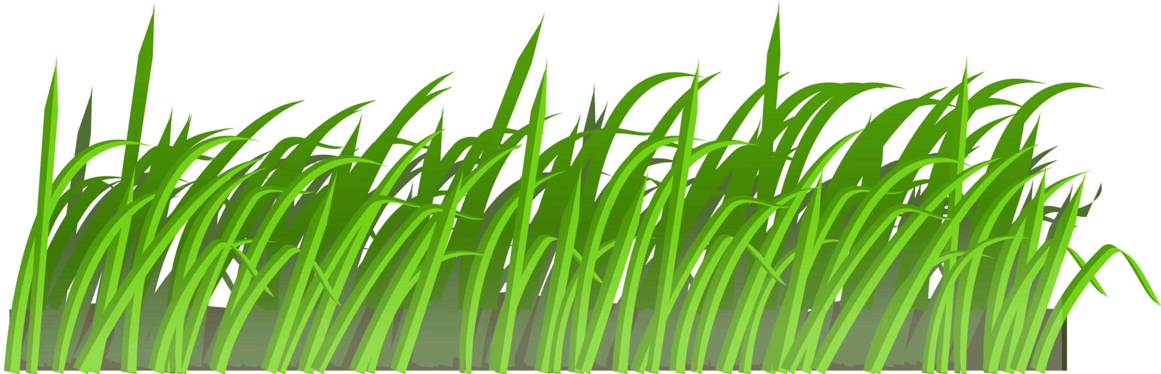 clip freeuse library Lawn mowers garden aeration. Yard clipart grass yard.