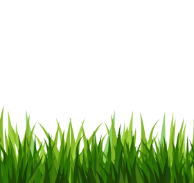 jpg royalty free stock Yard clipart transparent. Free grass png download.