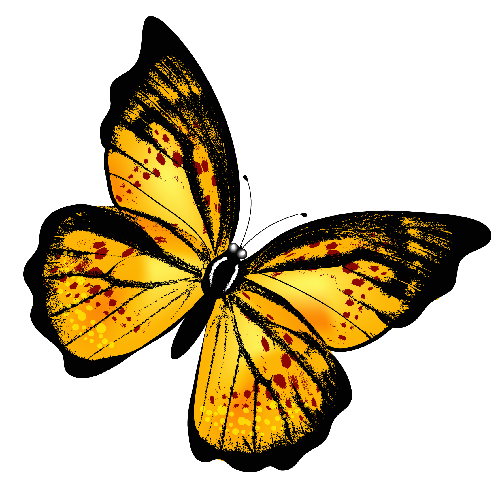 free download Transparent butterflies. Yellow butterfly png clipart