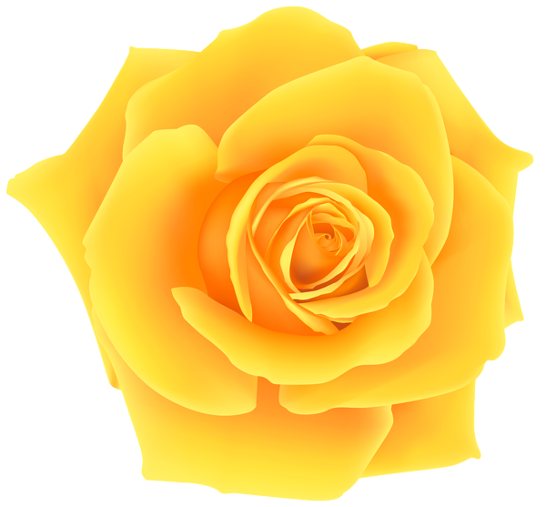 clip art library stock Yellow Rose PNG Clip Art Image