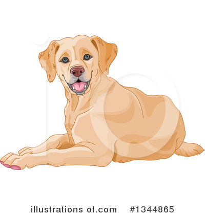 png freeuse library Yellow lab clipart. Illustration by pushkin