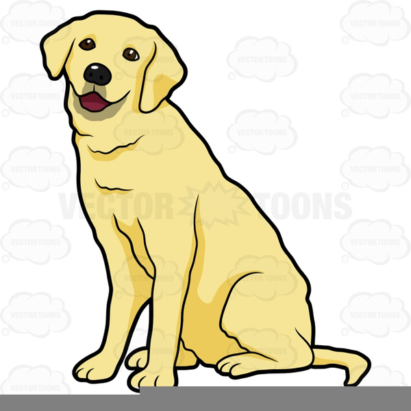 image library Yellow lab clipart. Labrador free images at
