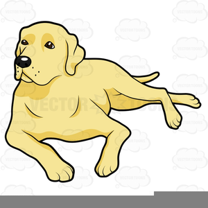 vector transparent library Labrador retriever free images. Yellow lab clipart