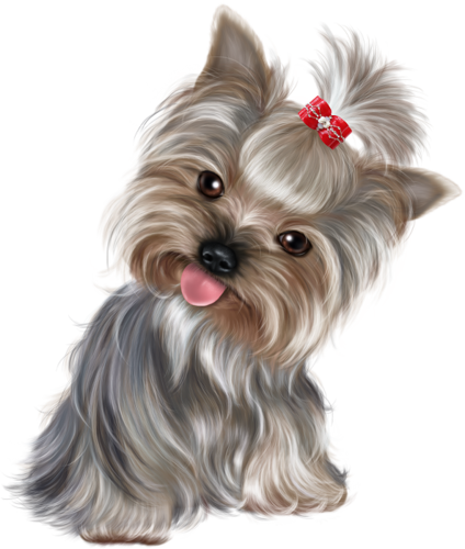 png royalty free puppies clipart yorkie poo #46342205