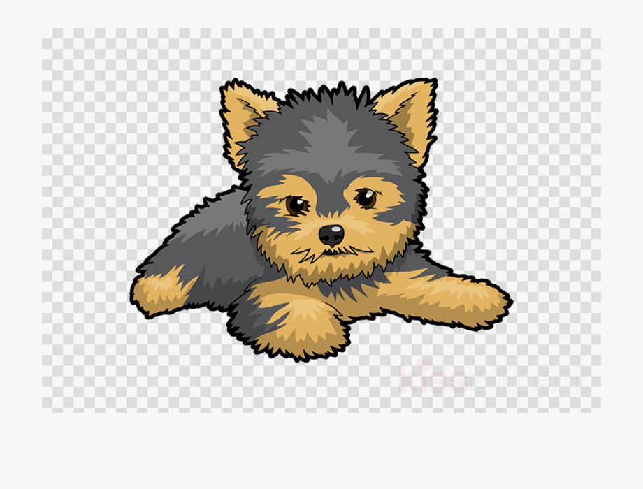 picture royalty free download Puppy st patrick s. Yorkie clipart.