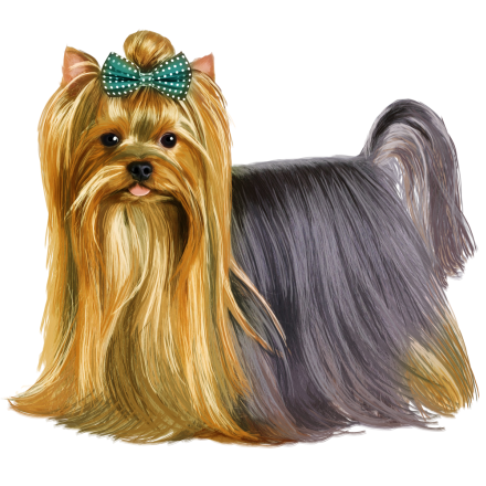 jpg library download yorkie vector clip art #119005000