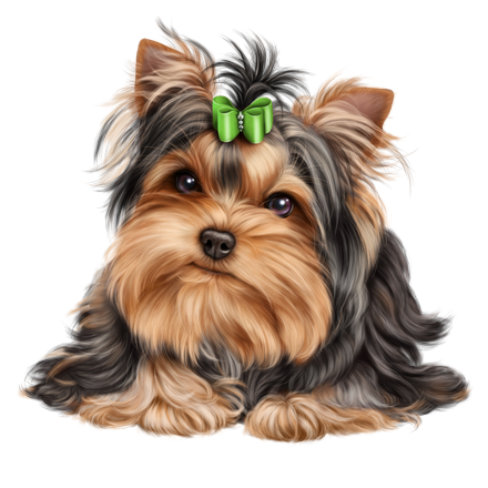 banner freeuse library yorkie vector dog #119006008